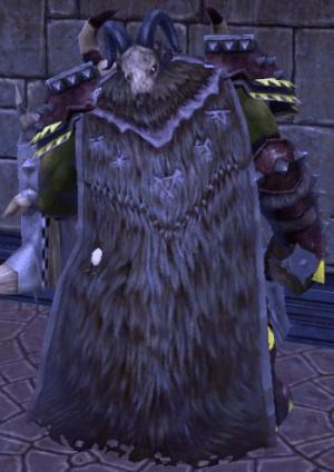 Appearance For Beastlord Cloak Destruction Ror Wiki