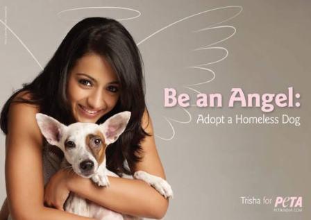 Trisha Krishnan Campaigning for PETA