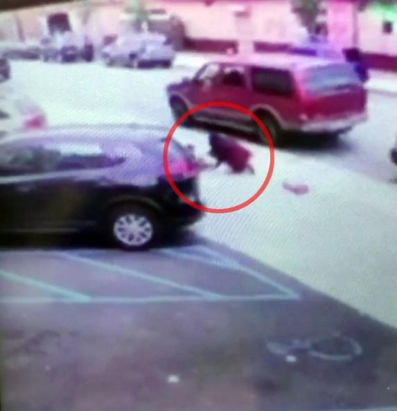 Luz Gonzalez, Brooklyn Hit and Run car accident