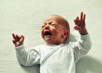 bayi alergi susu sapi