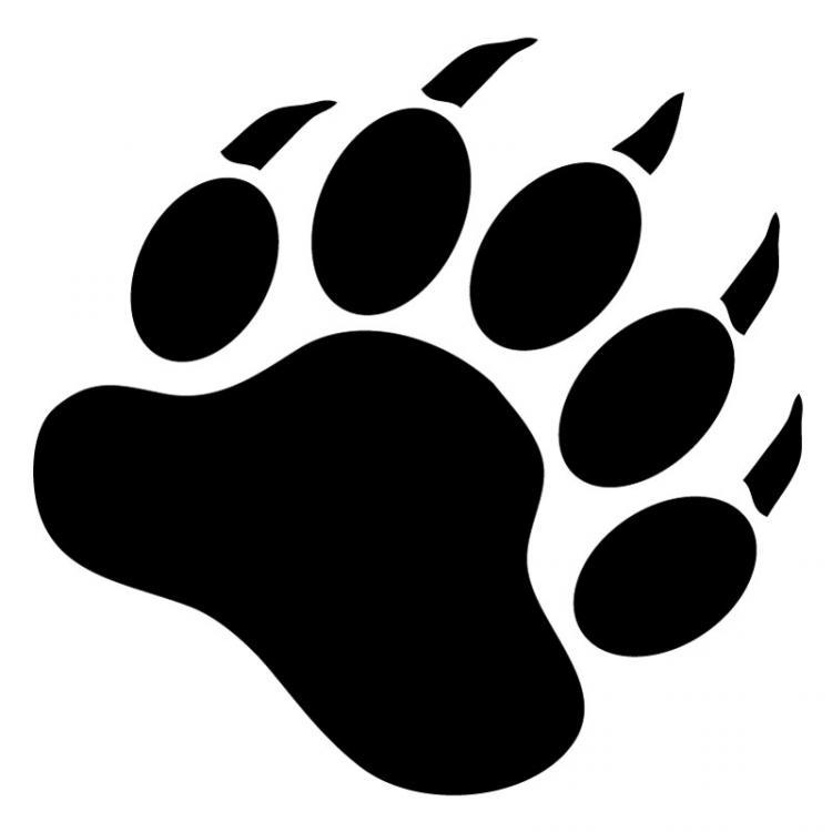 Bear paw stencil free download clip art on - WikiClipArt (750 x 750 Pixel)