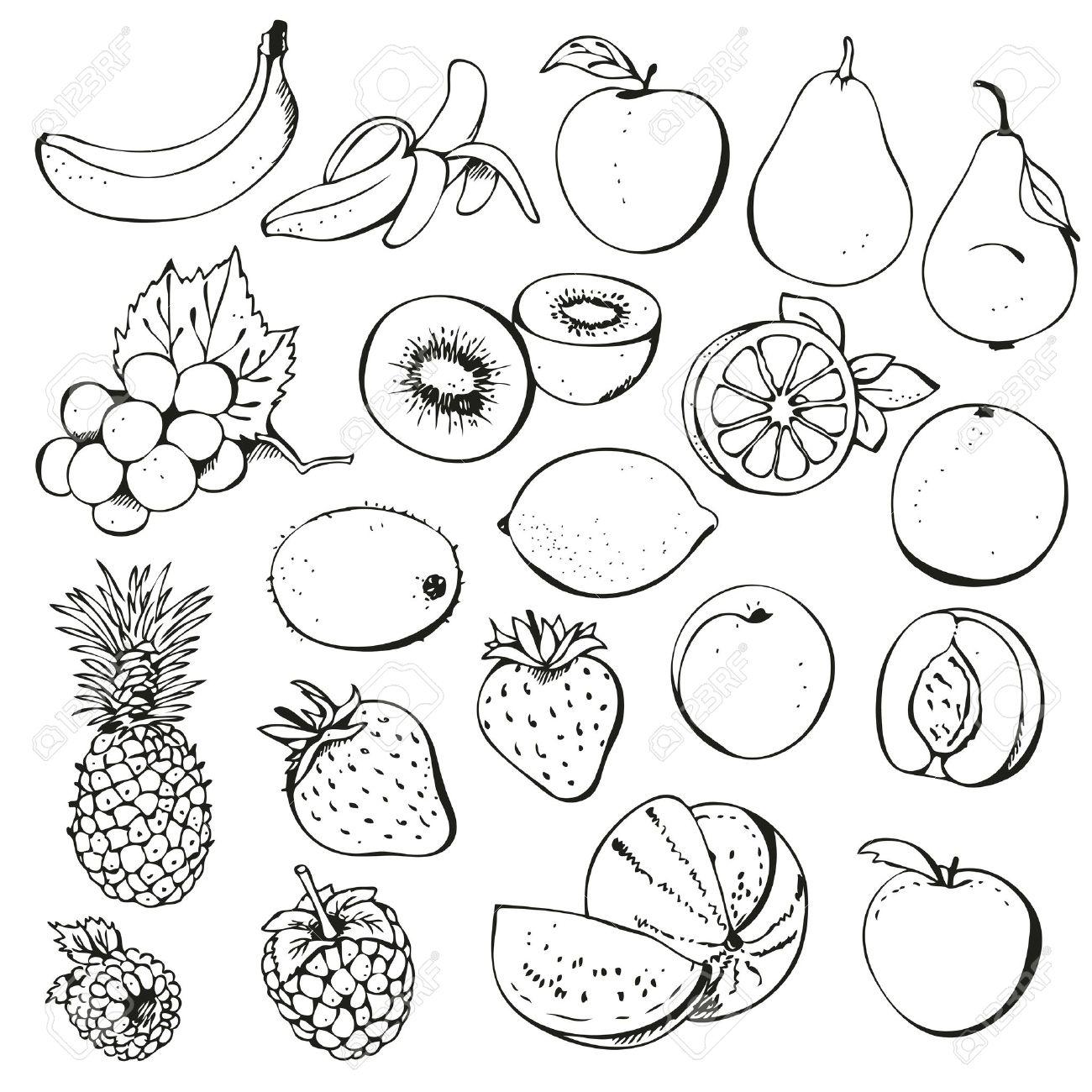 Fruit Black And White Fruit Black And White Clipart 3