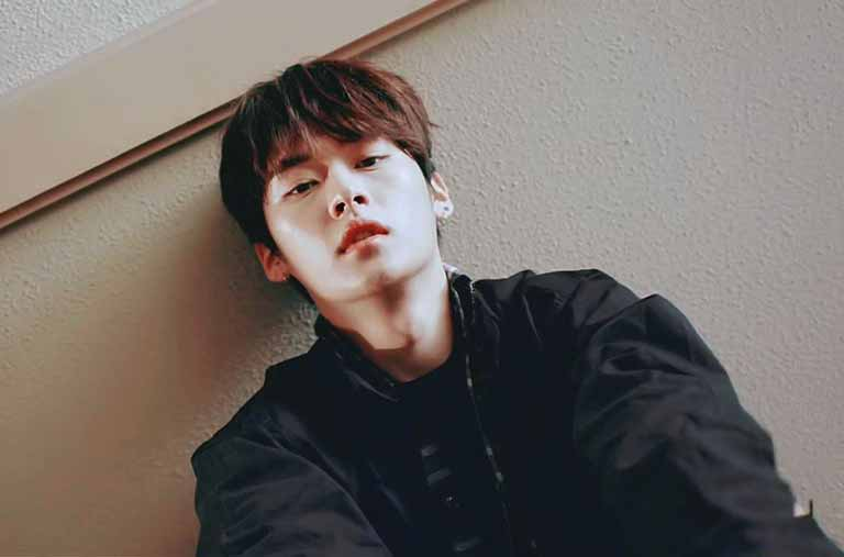 Lee Know (Stray Kids) age, wiki, girlfriend, Facts and more