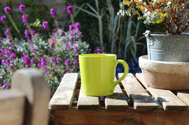 lose weight with green coffee