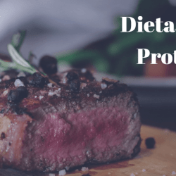 Dieta Alta en Proteinas