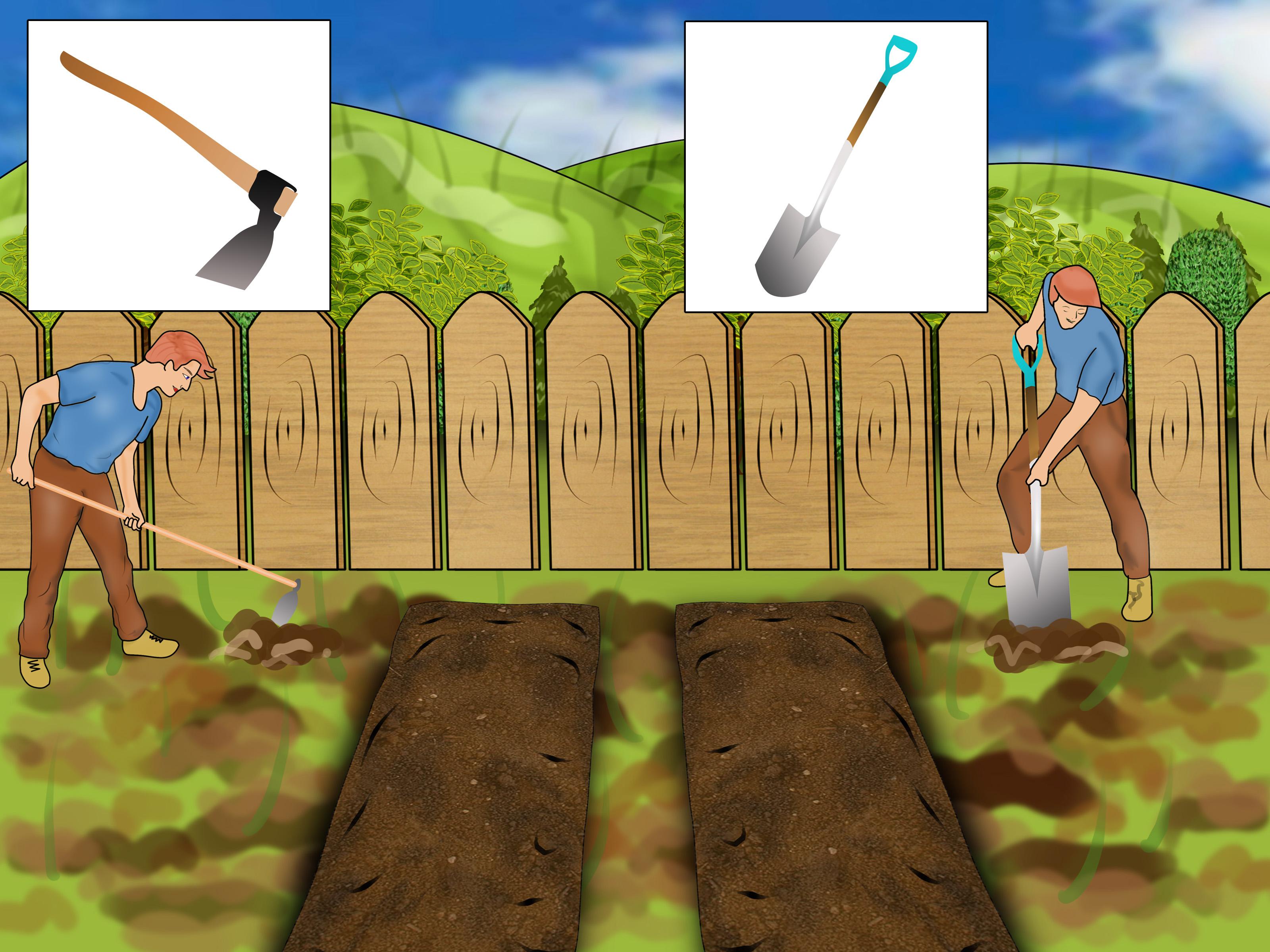 3 Ways To Buy Basic Garden Tools
