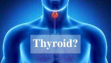 Photo of Natural Treatment to Stimulate the Thyroid ( An Easy Guide to Read )