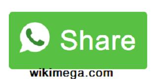How to Add WhatsApp Share Button in WordPress