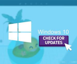 How to Check Out Early Versions And Updates of Windows 10
