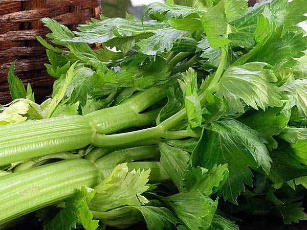 Celery Stalk Spinach-min