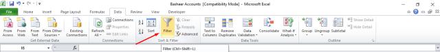 Filter Option in Excel