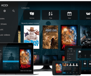 A Complete Guide to Kodi Setup and How to Use it