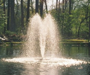 Everything to Know About Fountain Pumps