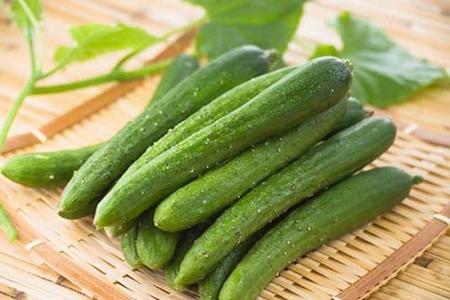 How to take care of cucumber
