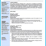 Business Analyst Resume Business Analyst Resume Examples business analyst resume|wikiresume.com