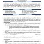 Business Analyst Resume Professional 4n 1 business analyst resume|wikiresume.com