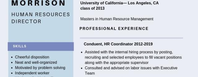 Human Resources Resume Human Resources Director Resume Example human resources resume|wikiresume.com