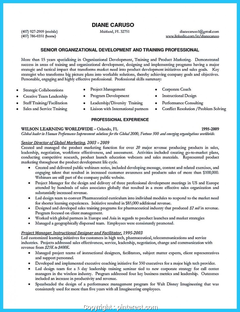 Resume Words Skills  Modern Business Development Skills Resume Awesome Best Words For The