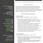 Sales Resume Examples Sales Manager Resume Example Template sales resume examples wikiresume.com