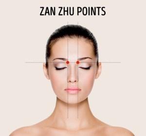 2. Zan Zhu Points