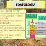 La Edafología