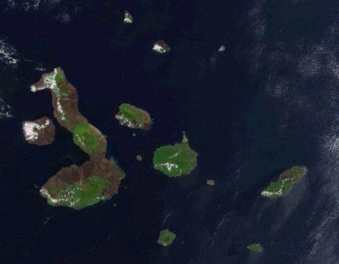 Image:Galapagos-EO.jpg