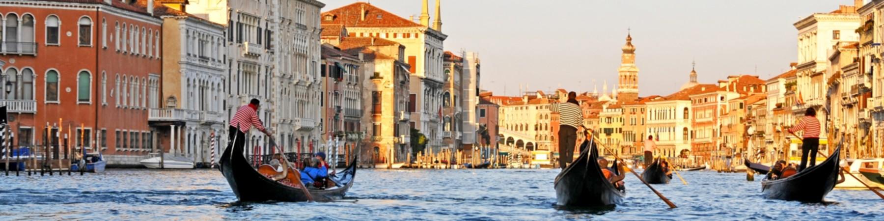 Venice Banner.jpg
