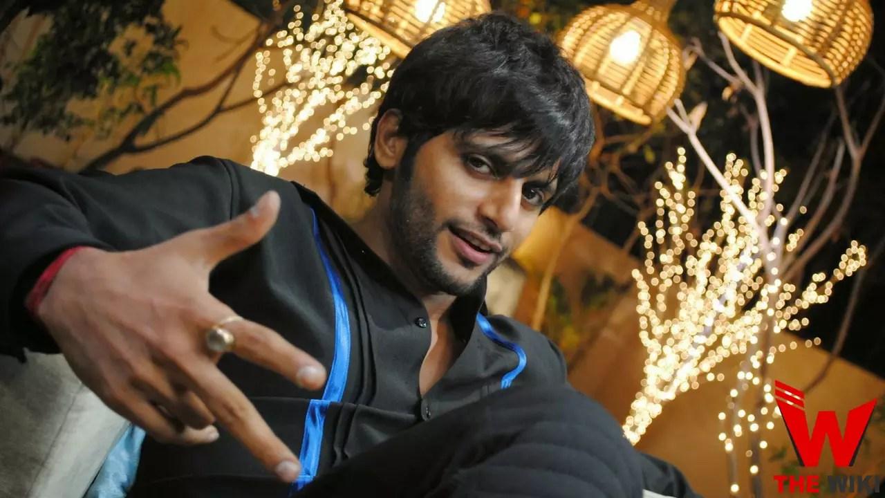 Karanvir Bohra (Bigg Boss 12, Actor)