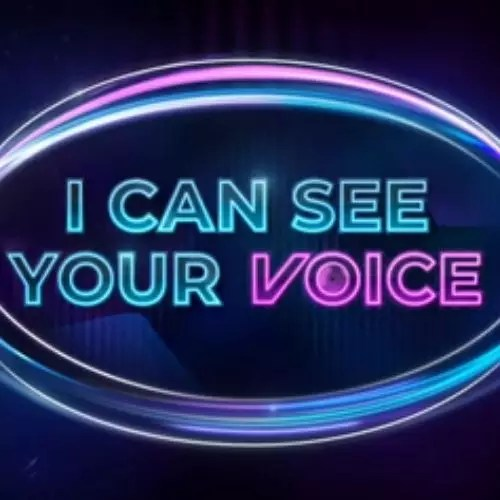 मैं आपकी आवाज देख सकता हूँ (2020)