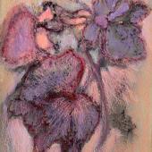 Lavender Surprise