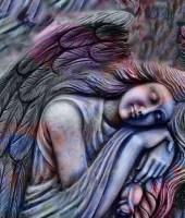 Angel Brings Comfort