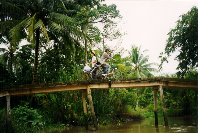 Wooden Bridge, Mekong, Vietnam