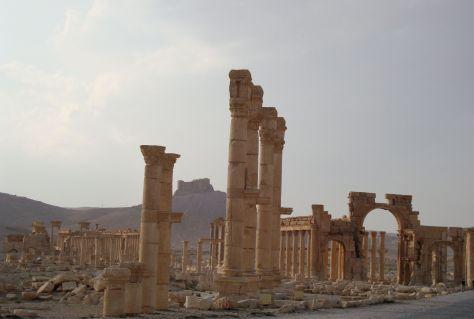 Palmyra18