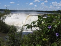 Iguazu Falls, Argentina 6