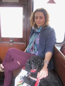On board the Ffestiniog Steam Train, Wales