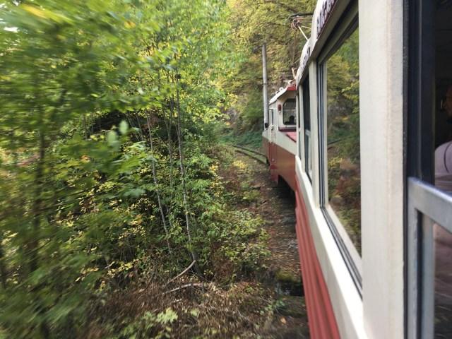 Borjomi to Bakuriani Train in Georgia