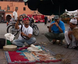 Marrakech Snake Charmer, Djemaa El Fna
