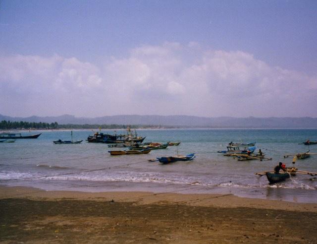 Fishing Fleet, Pangandaran, Indonesia, 1997