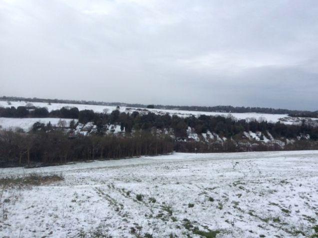 snow16