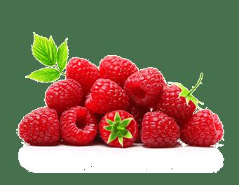 Quel est le meilleur supplément à base de Raspberry ketone ?