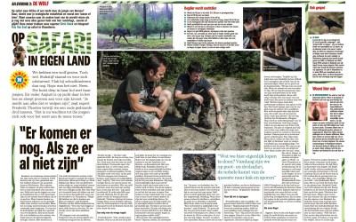Op zoek naar wolvensporen