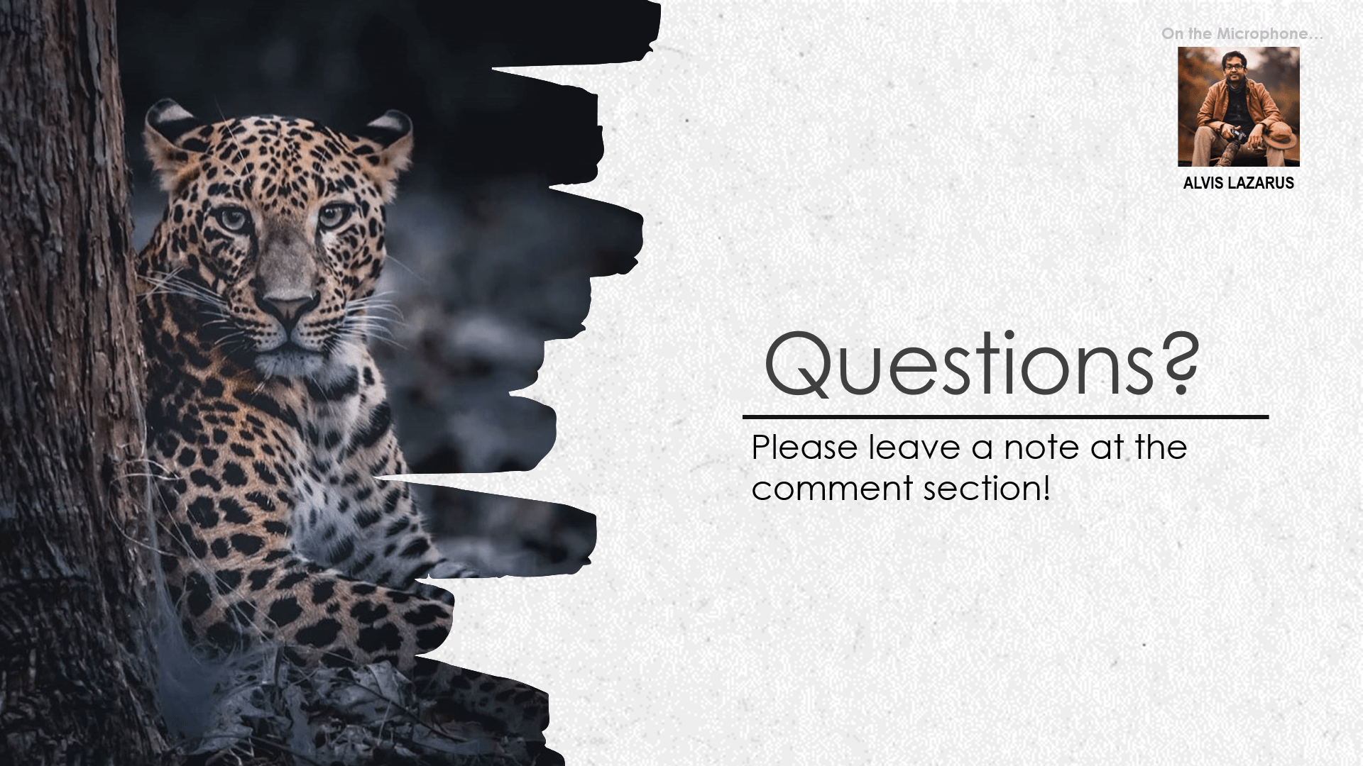 Questions on Wild Photography By Alvis Lazarus