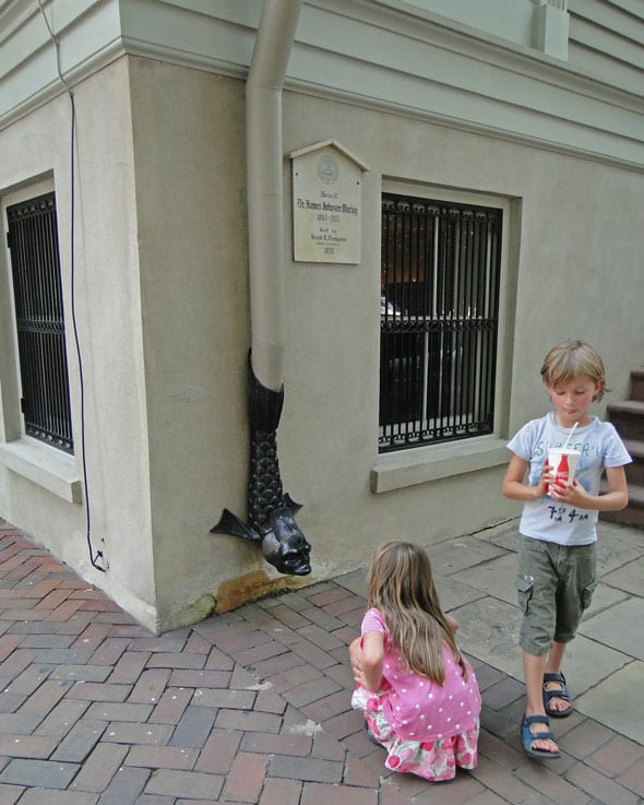 dolphin drainpipe walk with kids in savannah
