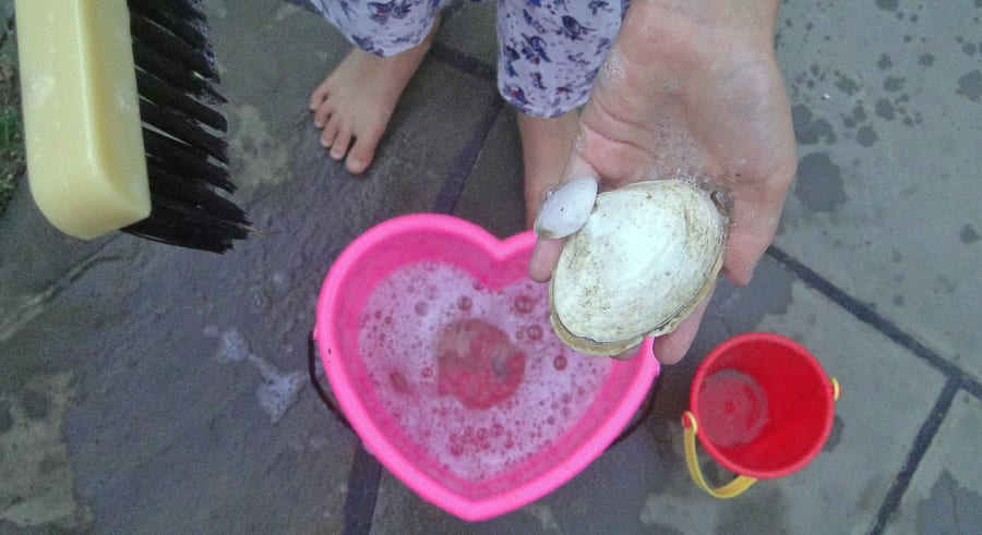 beach walk with kids shell washing