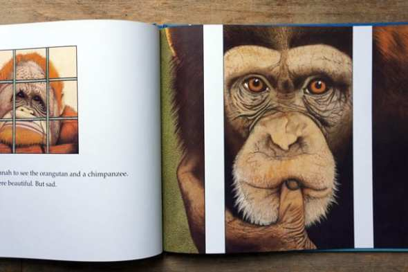 Gorilla By Anthony Browne 30th Anniversary Edition