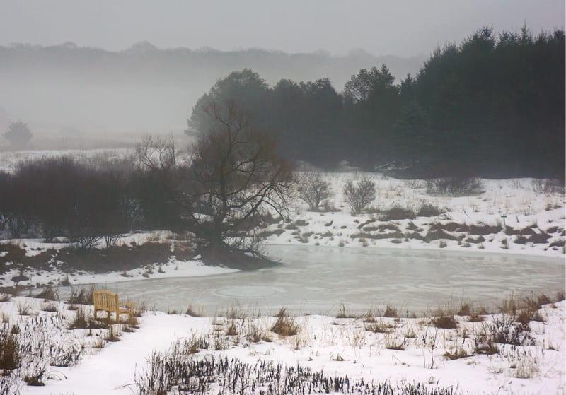 Hamptons NY Sofo pond mist