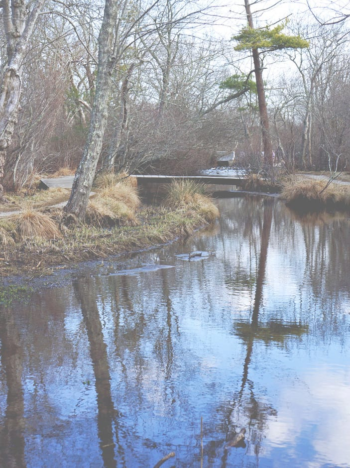 stream village nature trail