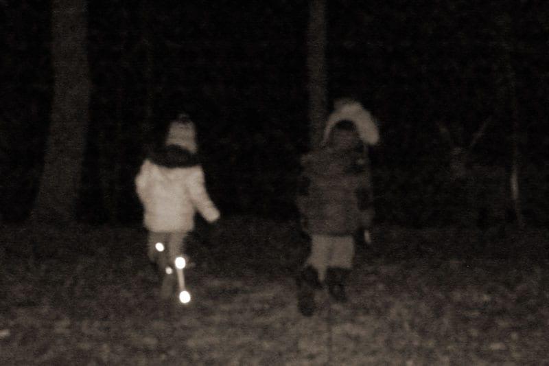 walking woods night