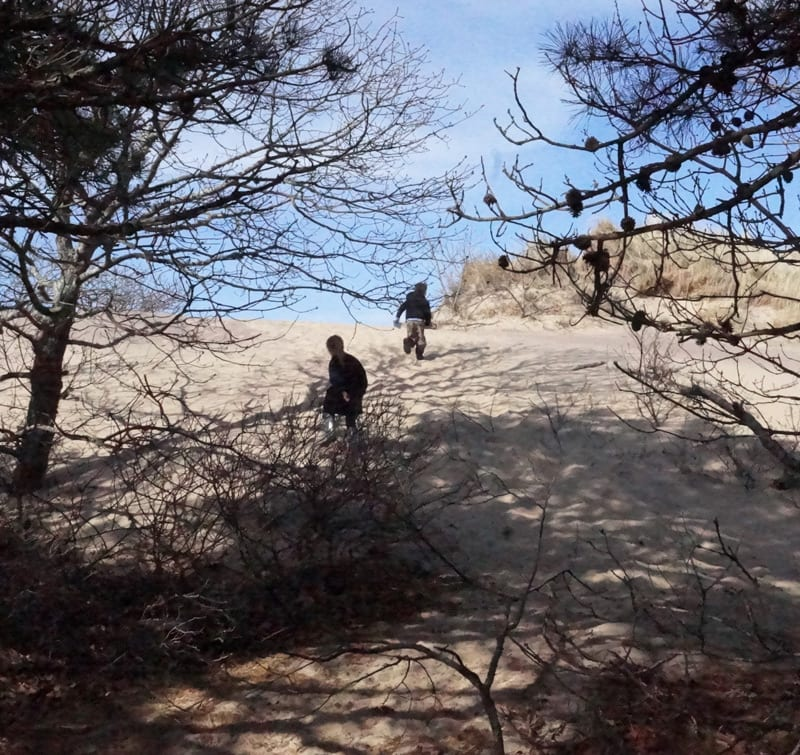running up to dune from forest path