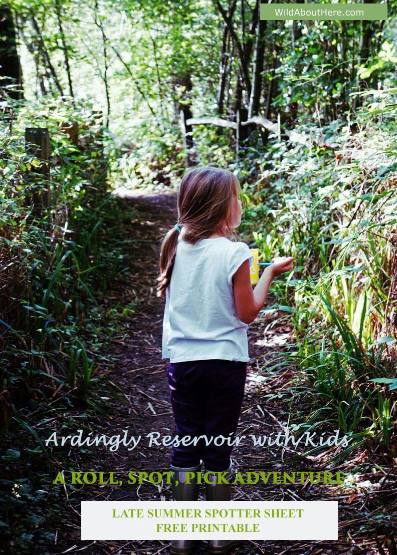 Kids Late Summer Nature Spotter Sheet